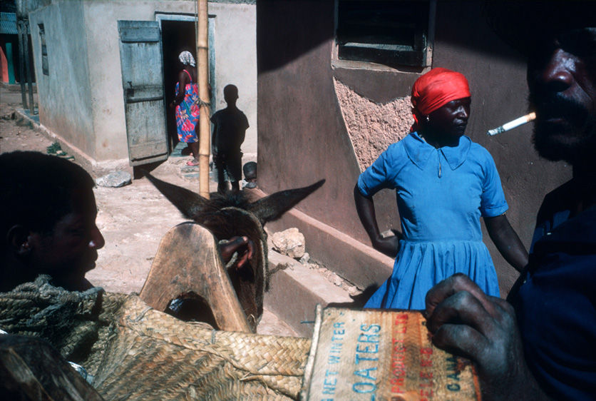 Photo / Foto: Alex Webb.