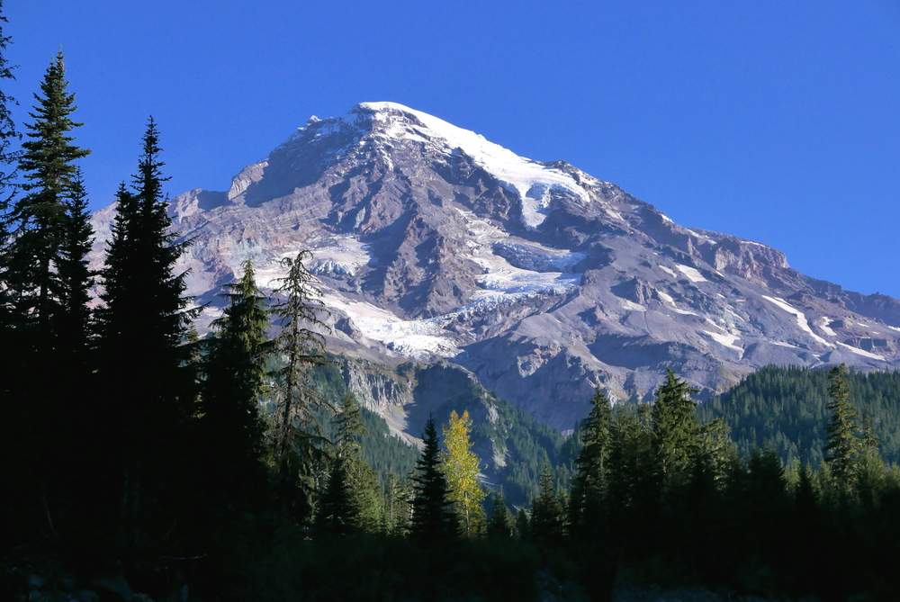 the mountain from Kautz Creek