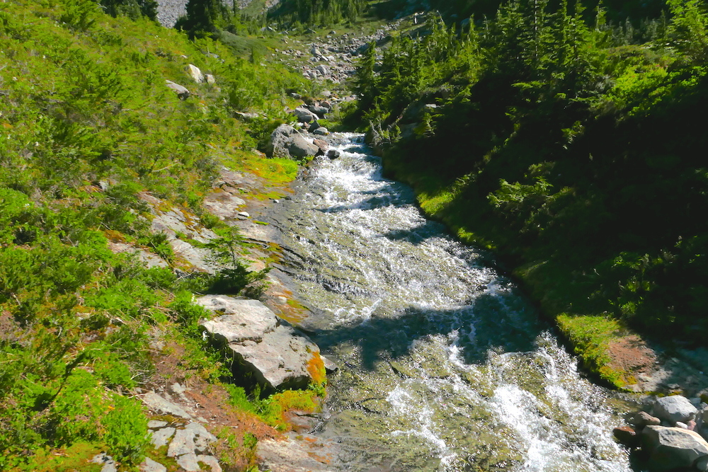 Marmot Creek (Mother Mountain Orbit)