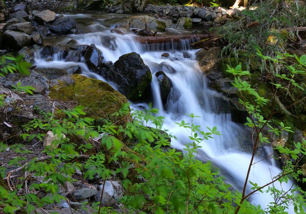 Snow melt feeds myriad creeks on the Wonderland Trail