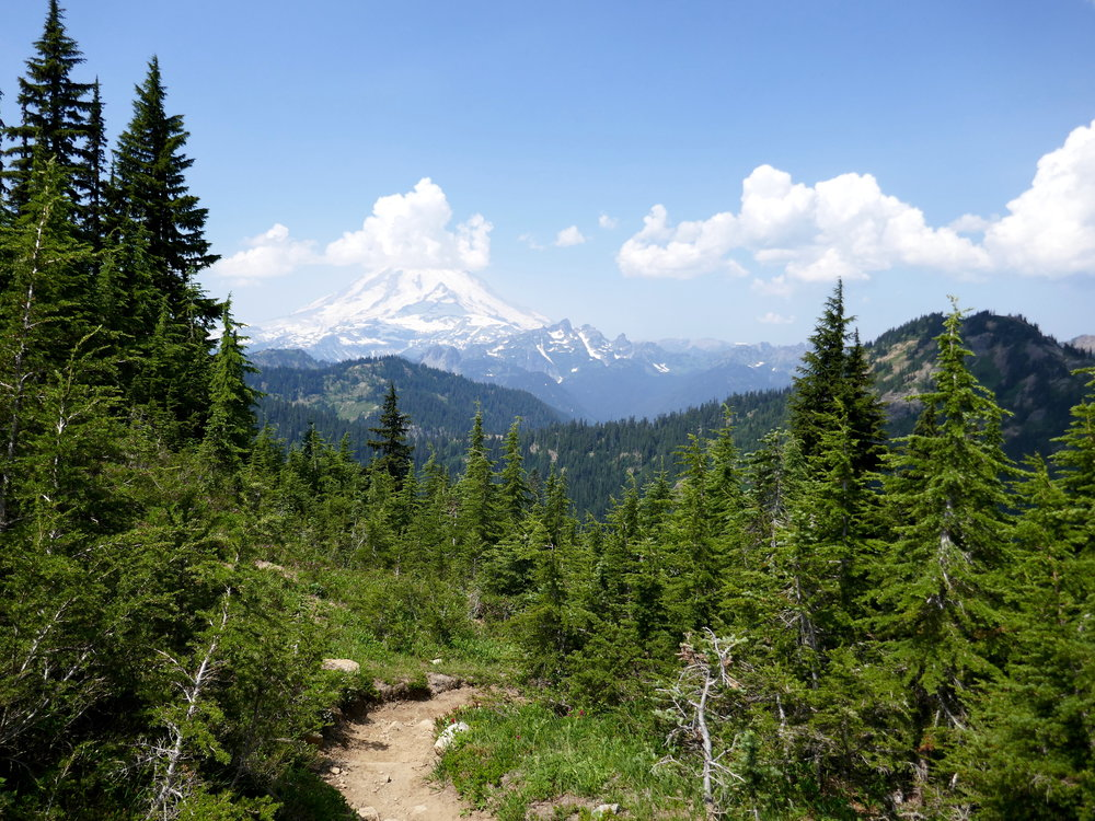 Looking west towards Mt. Rainier from the PCT