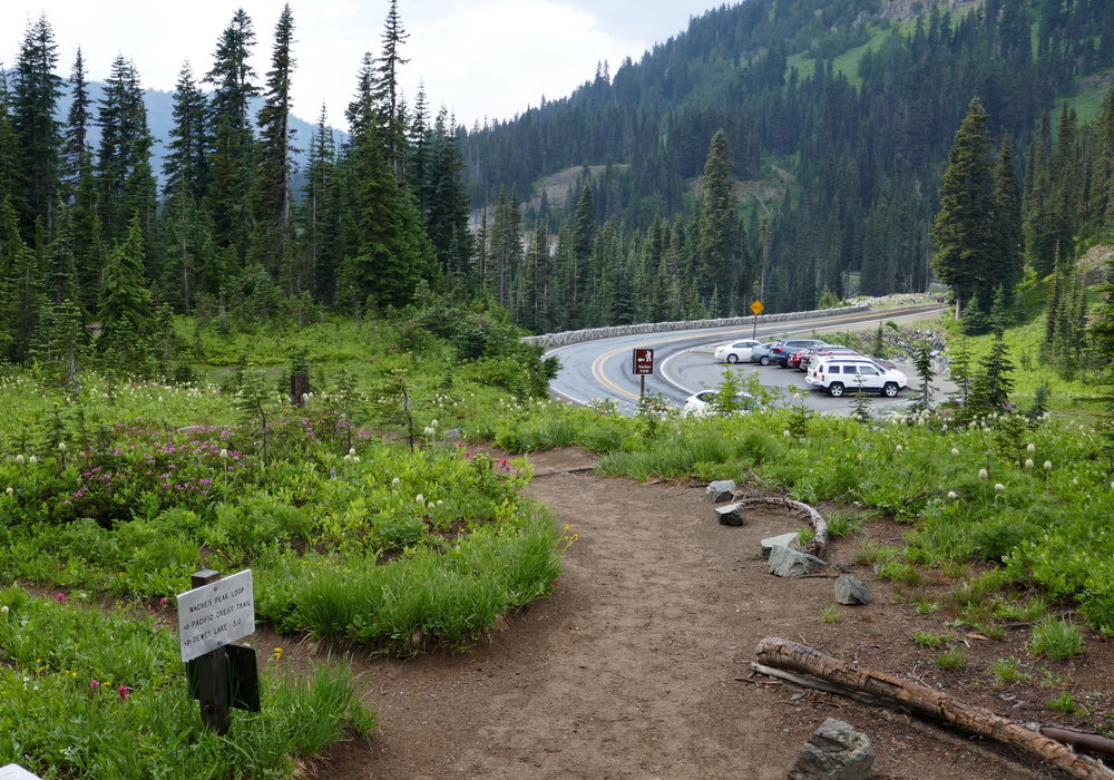 Turn left on the Eastside Trail (Chinook Pass) and leave the crowds behind
