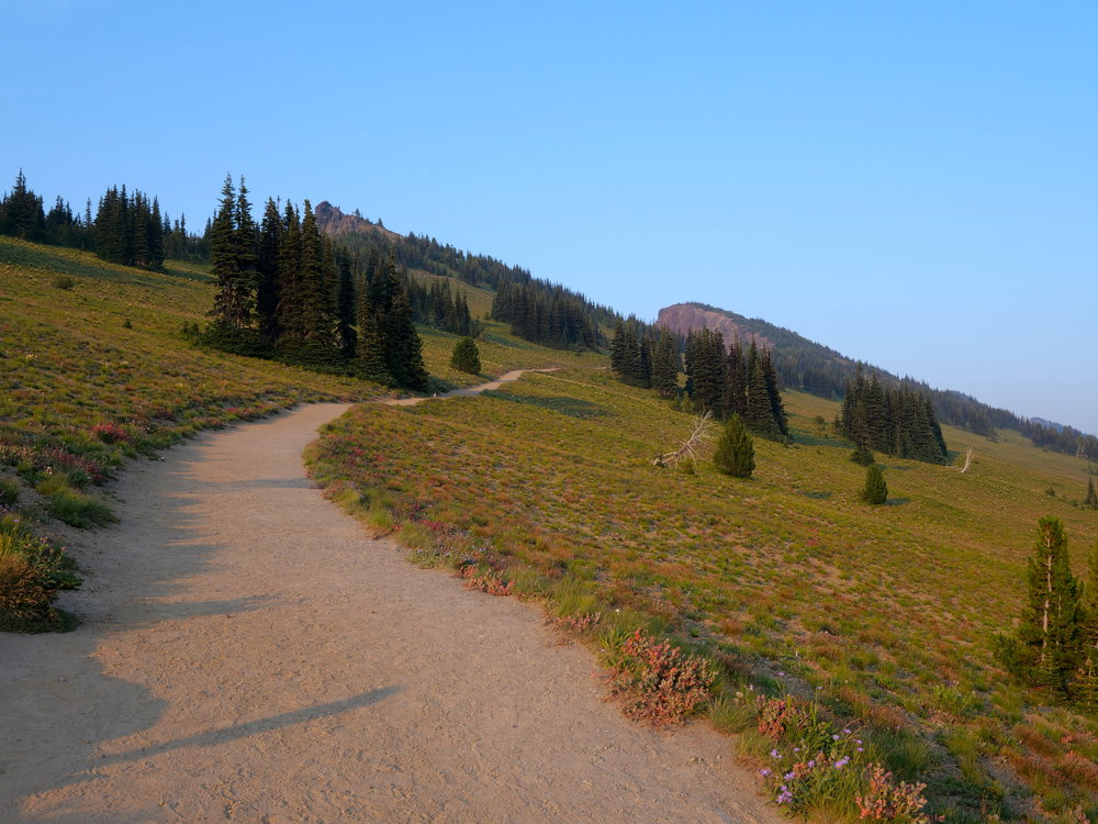Antler Peak (7017'), right of trail, on trek back to Sunrise after summiting McNeeley