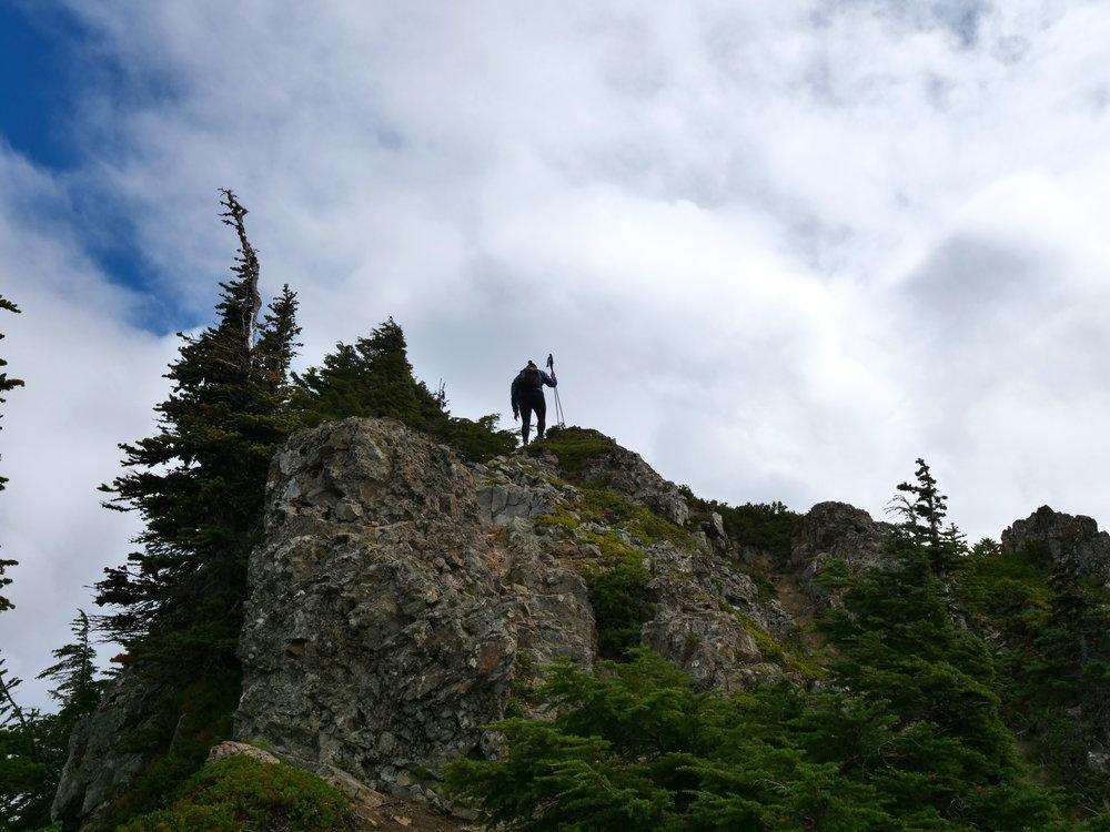 Approaching Tolmie Peak summit