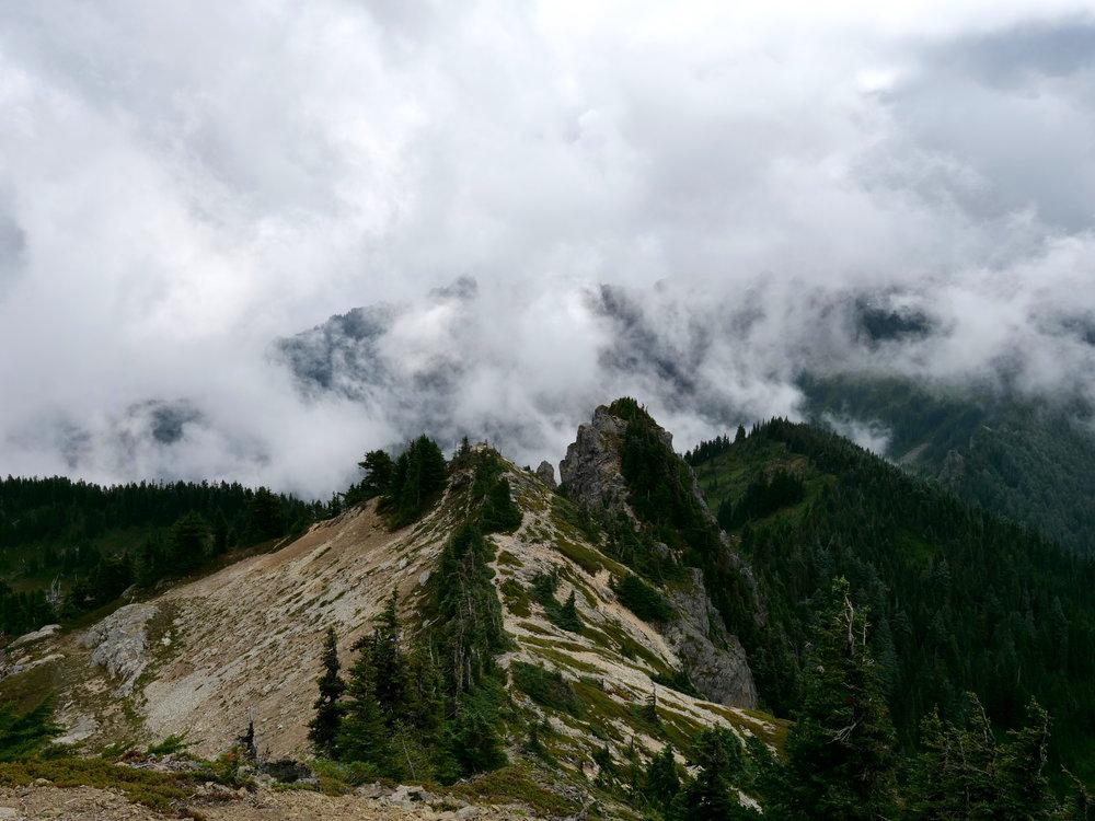 Looking east from Tolmie Peak