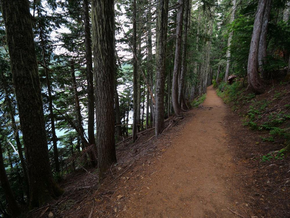Wonderland Trail next to Mowich Lake