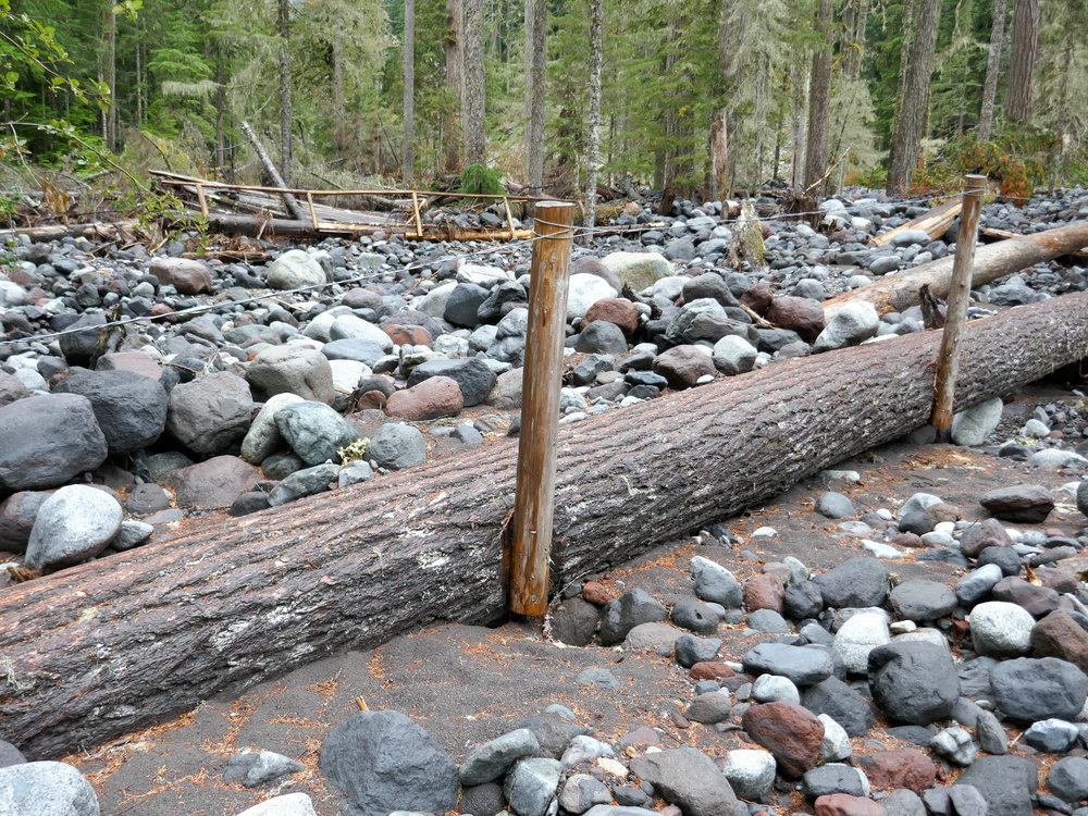 Now unused stranded bridges in the Carbon River flood plain