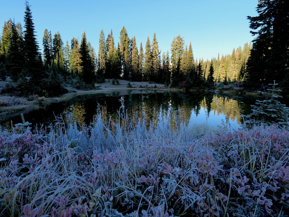 A frosty Tipsoo Lake in early morning, Chinook Pass