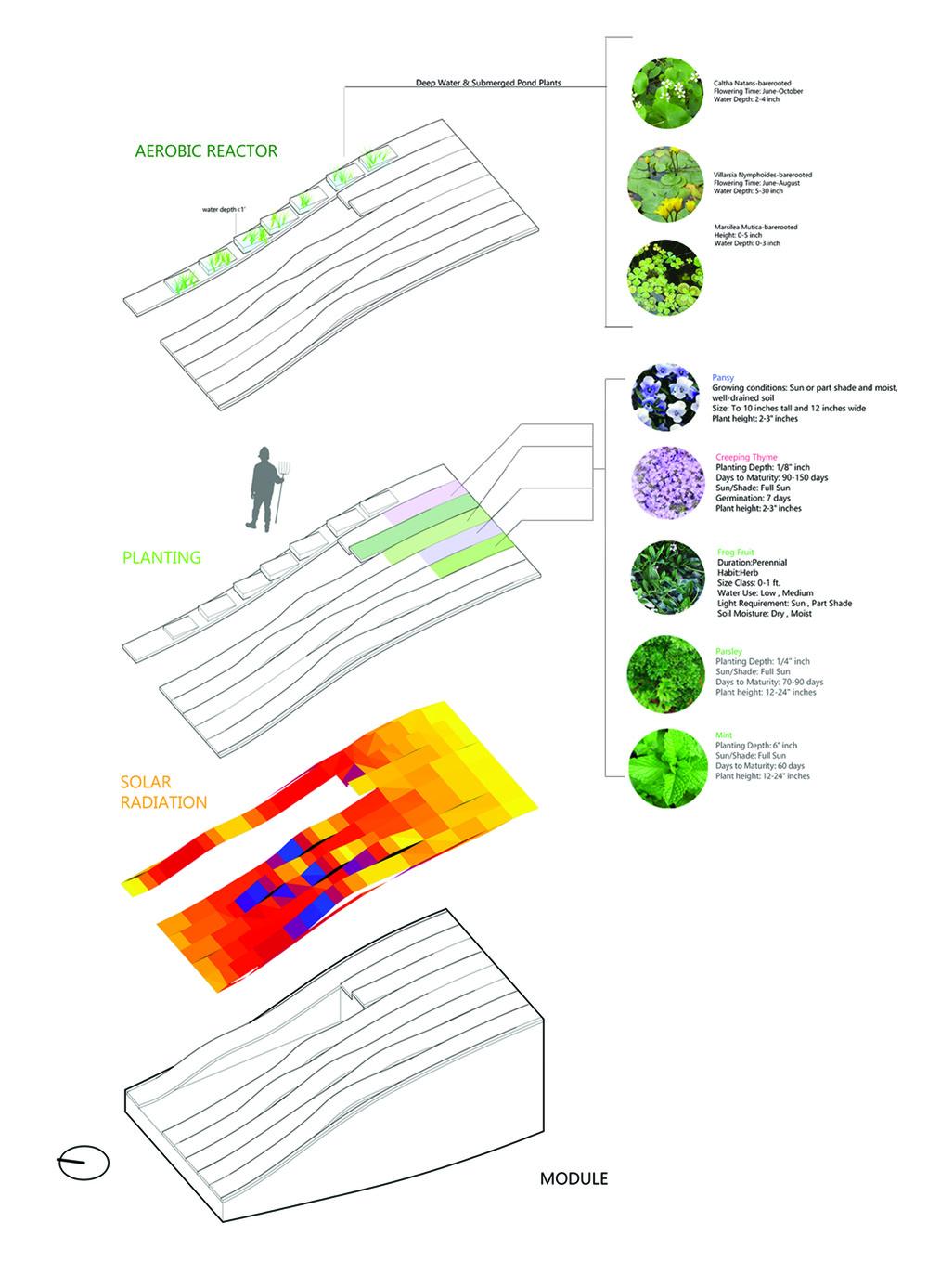 module analysis