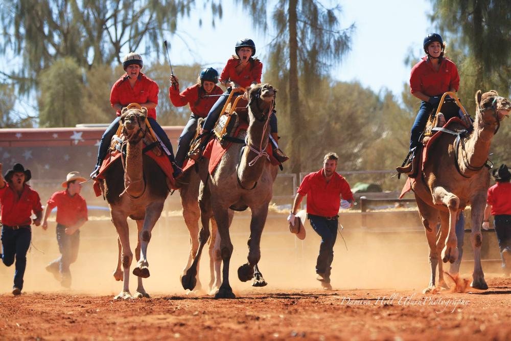 Camel racing 2.jpg