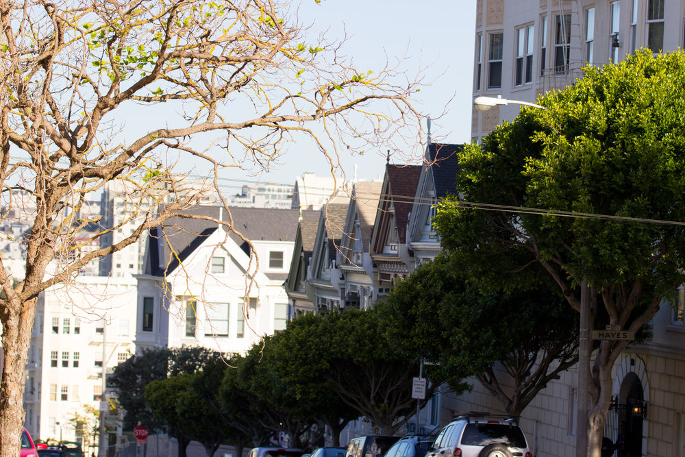 painted-ladies-sf.jpg