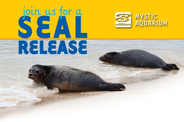 Seal Release.jpg