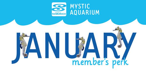 MembersPerks_January.jpg