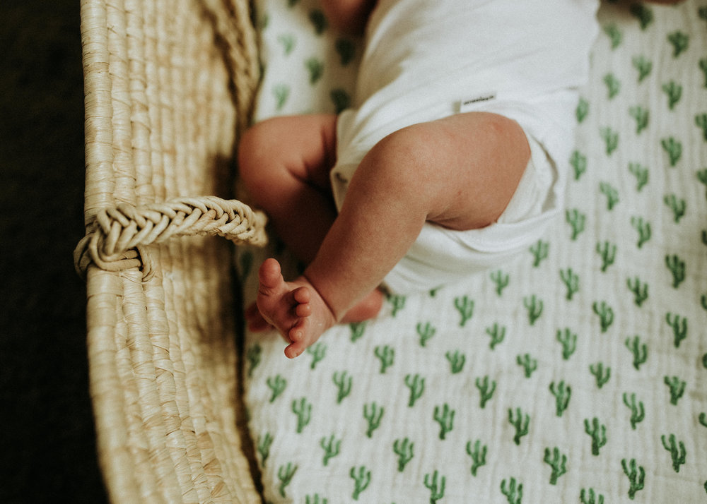 Newborn-Photographer-Bellingham-WA-Brianne-Bell-Photography-(Asa)