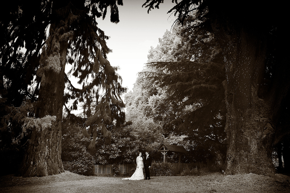 wanaka_station-park-wedding-fluidphoto.jpg