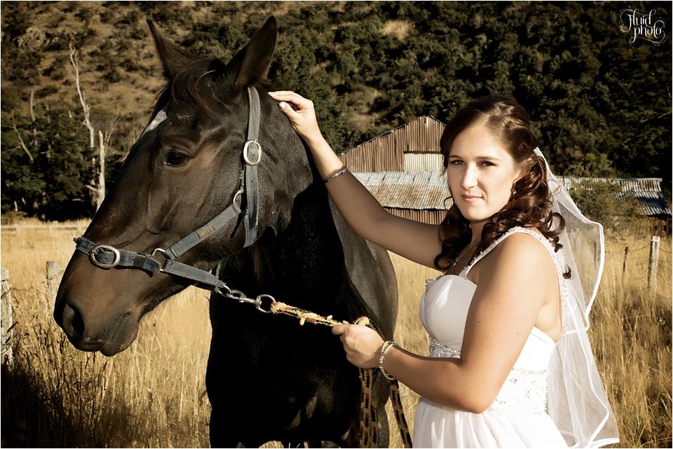 bride-horse-24