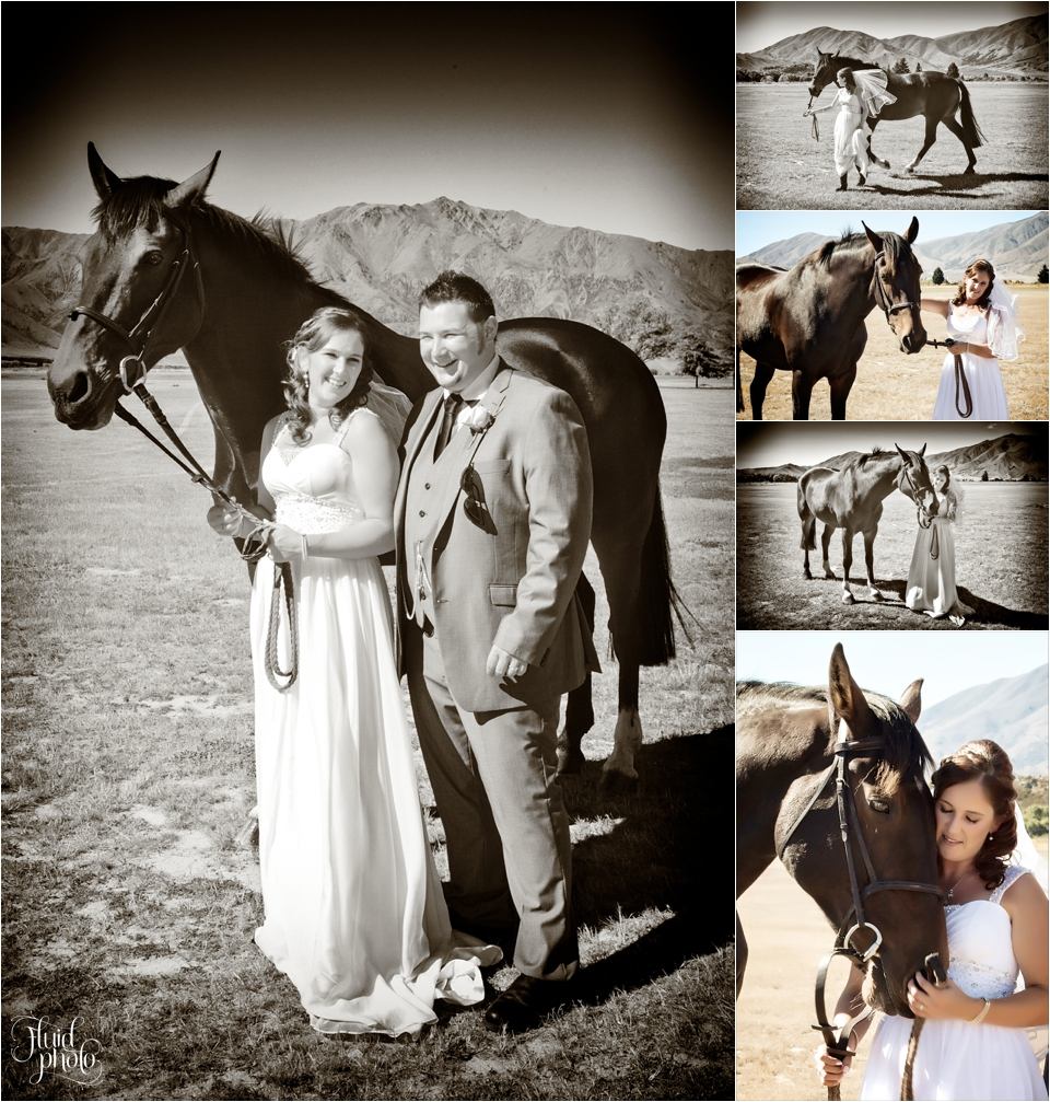 wedding-horse-16