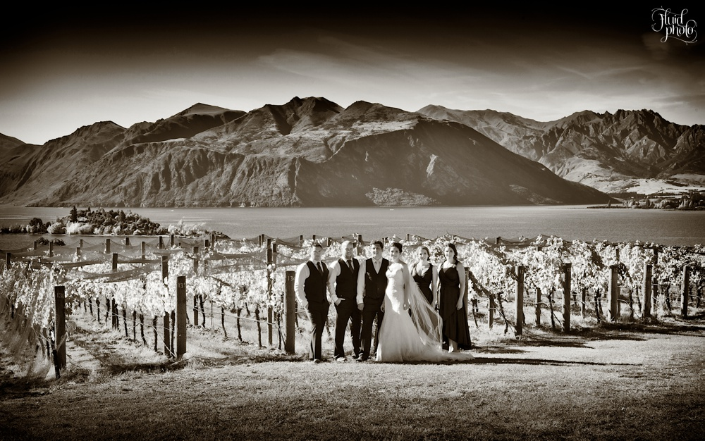 rippon-vineyard-wedding-25