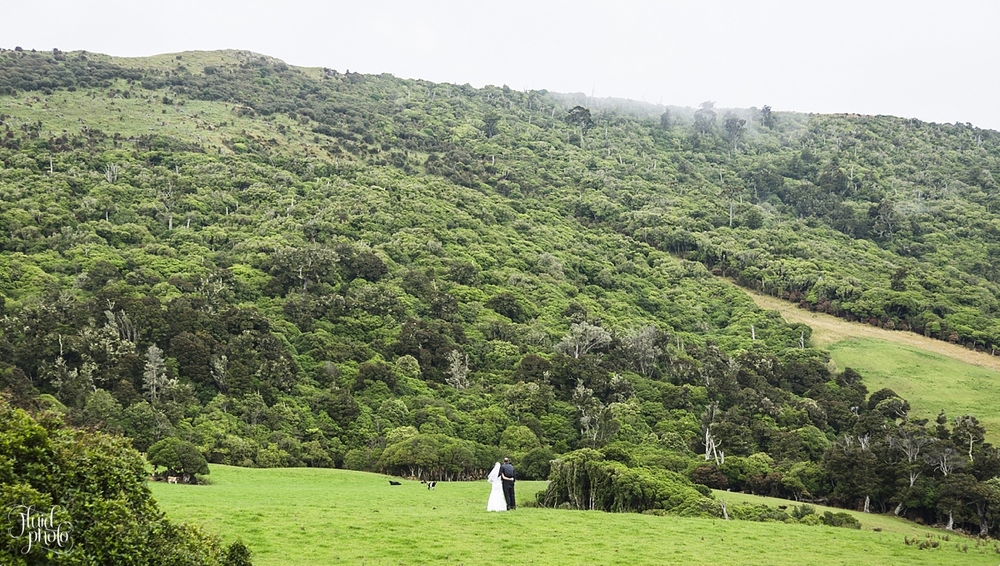 Catlins Wedding Location Photo