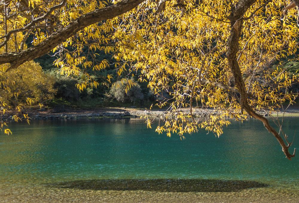 clutha-river-photo.jpg