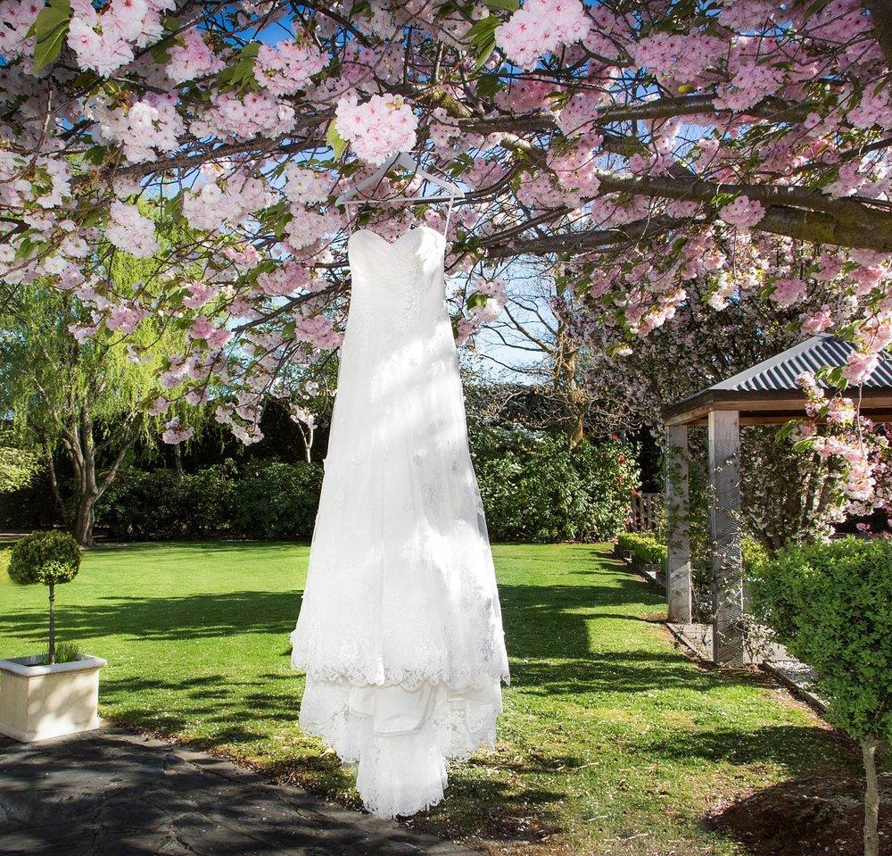 spring-blossom-wanaka-04.jpg