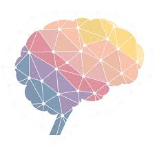 Neuroscience & Neuroleadership
