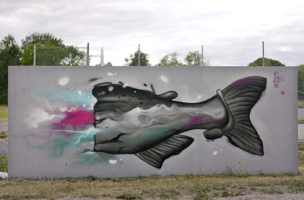 Fisk back.jpg