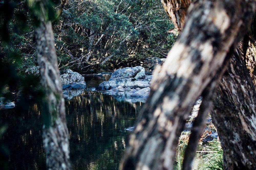 magnolia_mountain_campfire_gloucester_river_XVIII.jpg