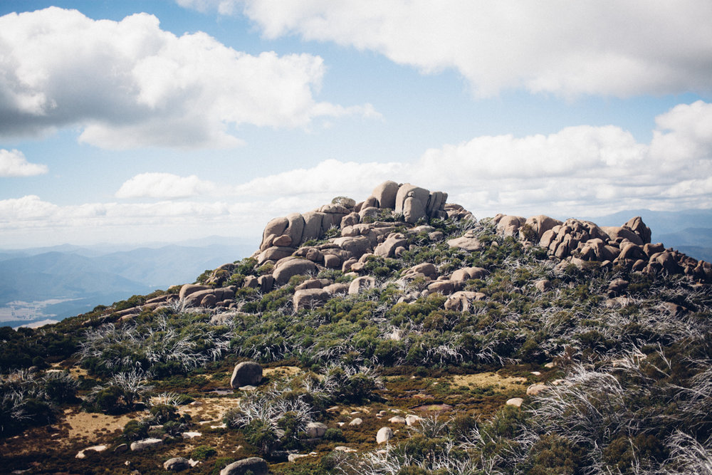 magnolia_mountain_highlands_II.jpg
