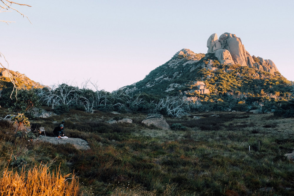 magnolia_mountain_highlands_mt_buffalo_I.jpg