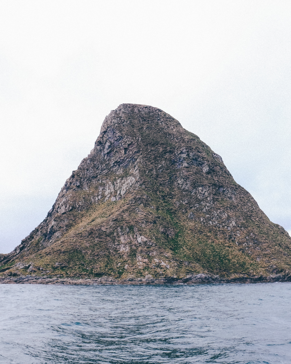 magnolia_mountain_nordland_bleik_bird_rock.jpg