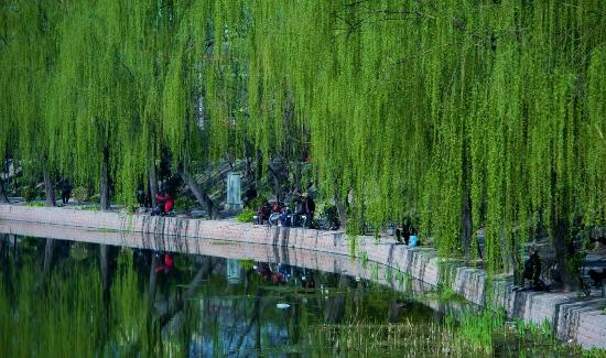 Fishing by Liangma River in Beijing.