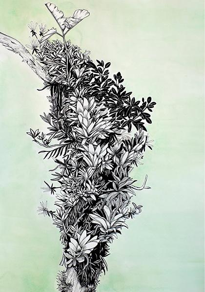 Cornucopia, Ink & Watercolor on Paper, 30 x 22 in, 2018.