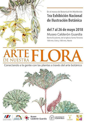 The painting was featured in the poster of the event. Thank you to Jardín Lankester and Museo Calderón Guardia.