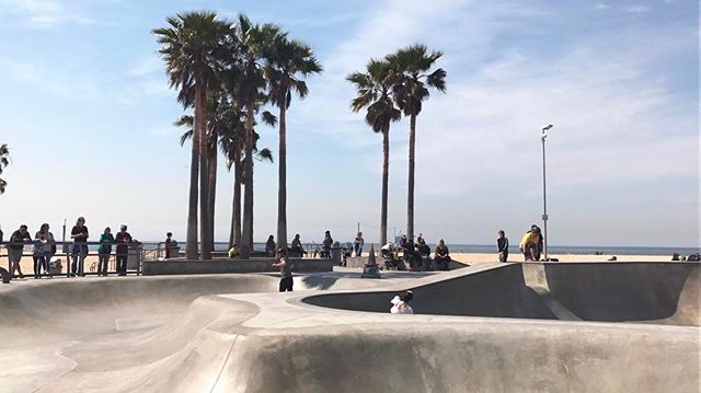 Venice beach 🌊