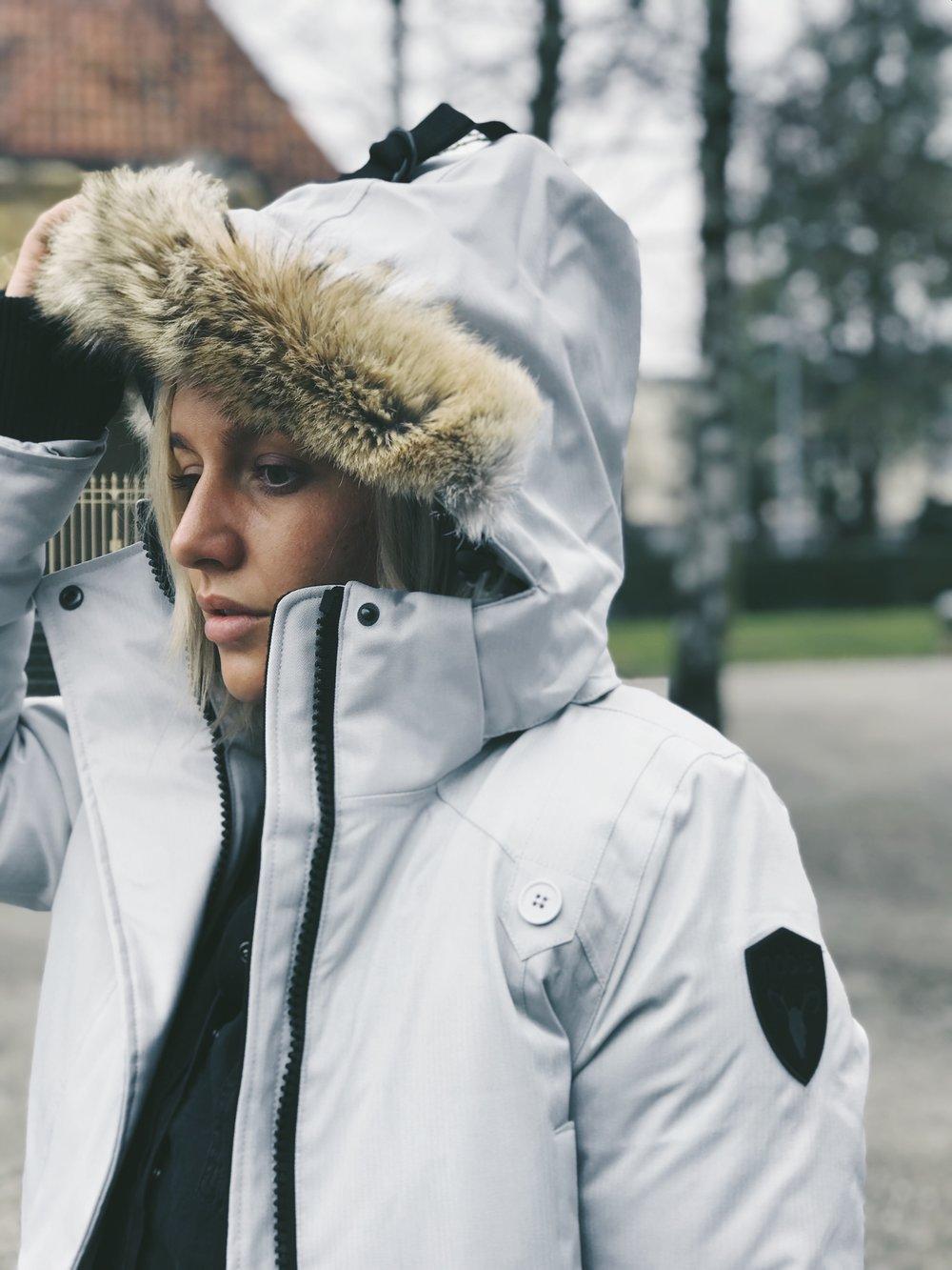 Canada - Meilleur ami du froid