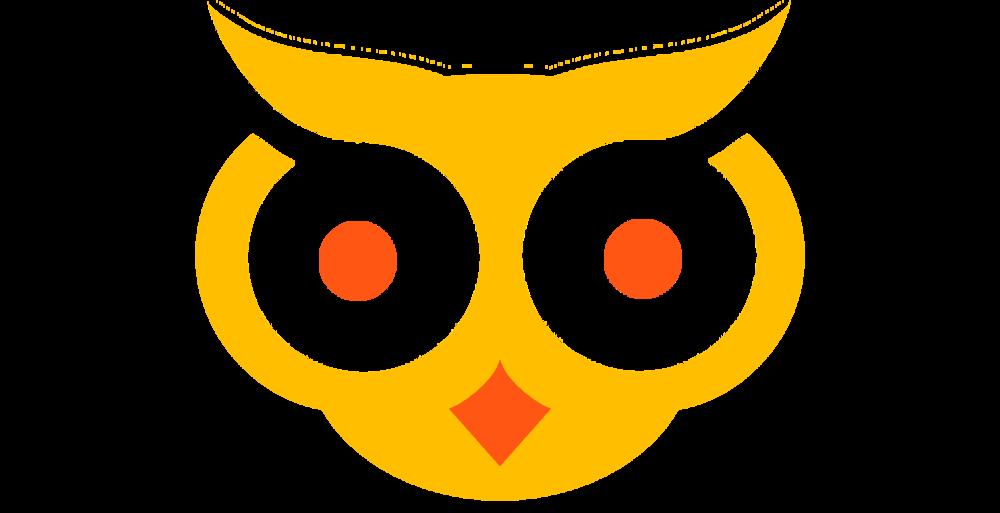 owl_crop.png