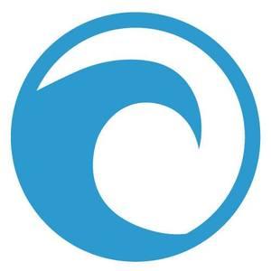 hawaiiseo-logo.jpg