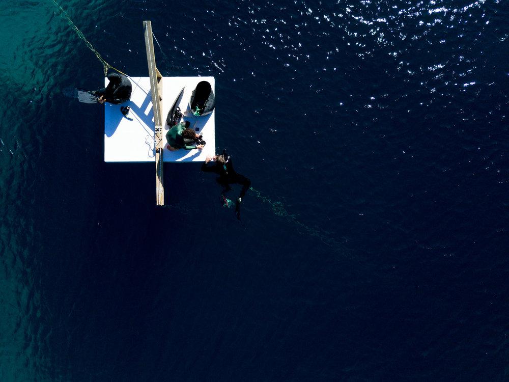 Aerial_Vision_0006_.jpg