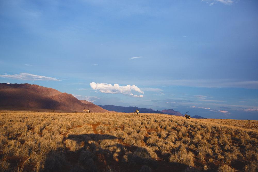 0033_Namibia_5568.jpg