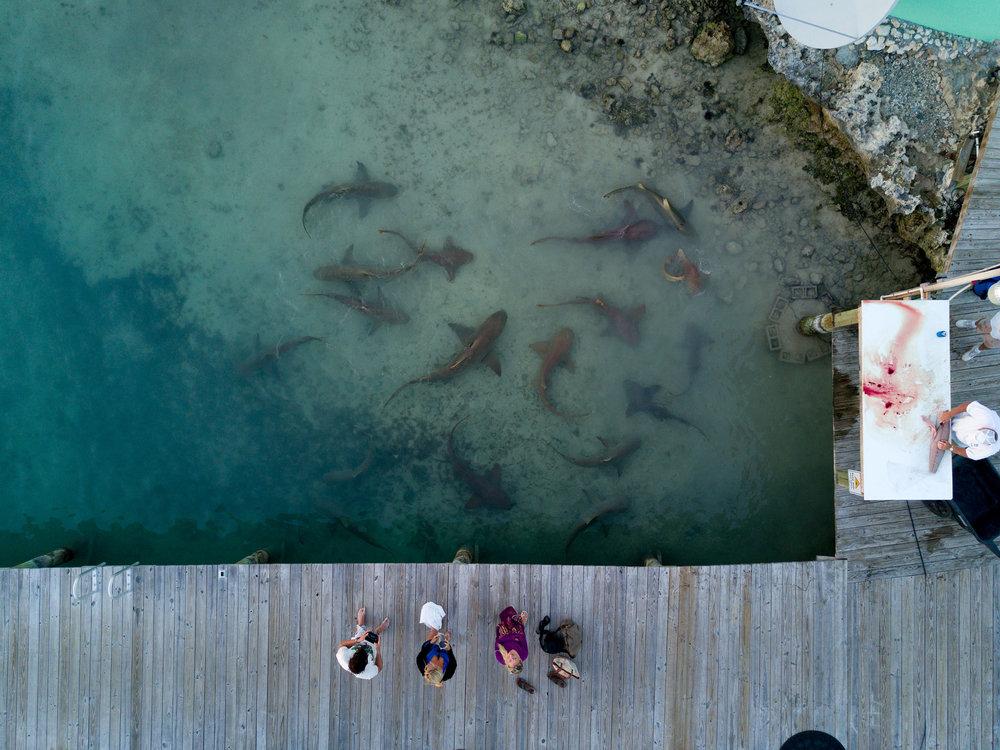 Travel_StudioM_Bahamas-14.jpg