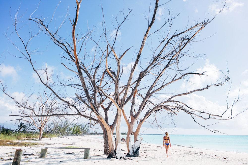 Travel_StudioM_Bahamas-20.jpg
