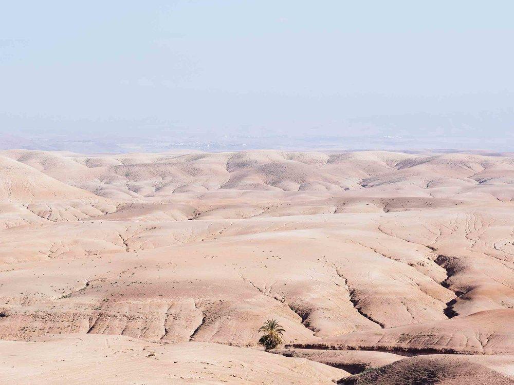 Morocco-08240.jpg