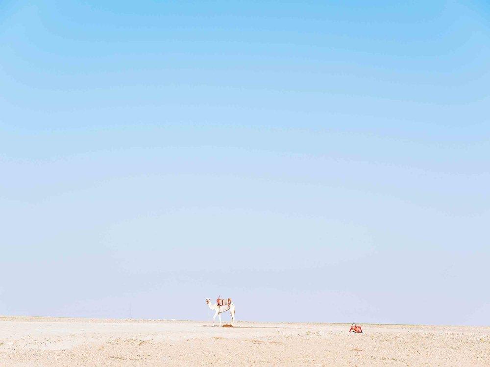 Morocco-08253.jpg