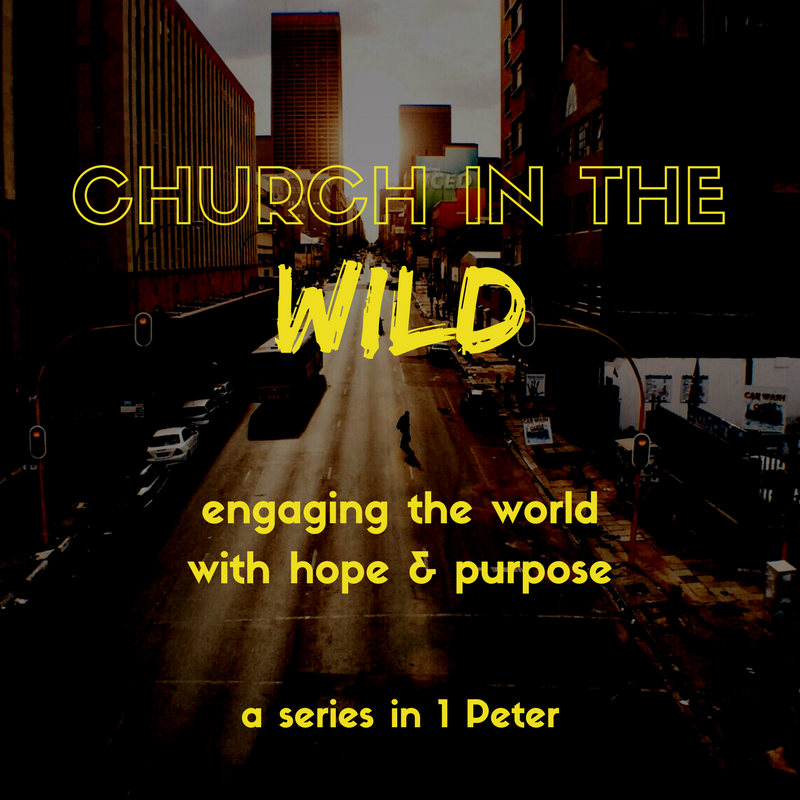 Copy of Church in the Wild IG(1).png