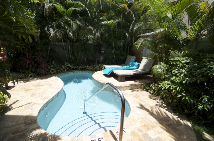plunge-pools-available-in-suites-at-sandals-negril-E287R1537_745_493.jpg