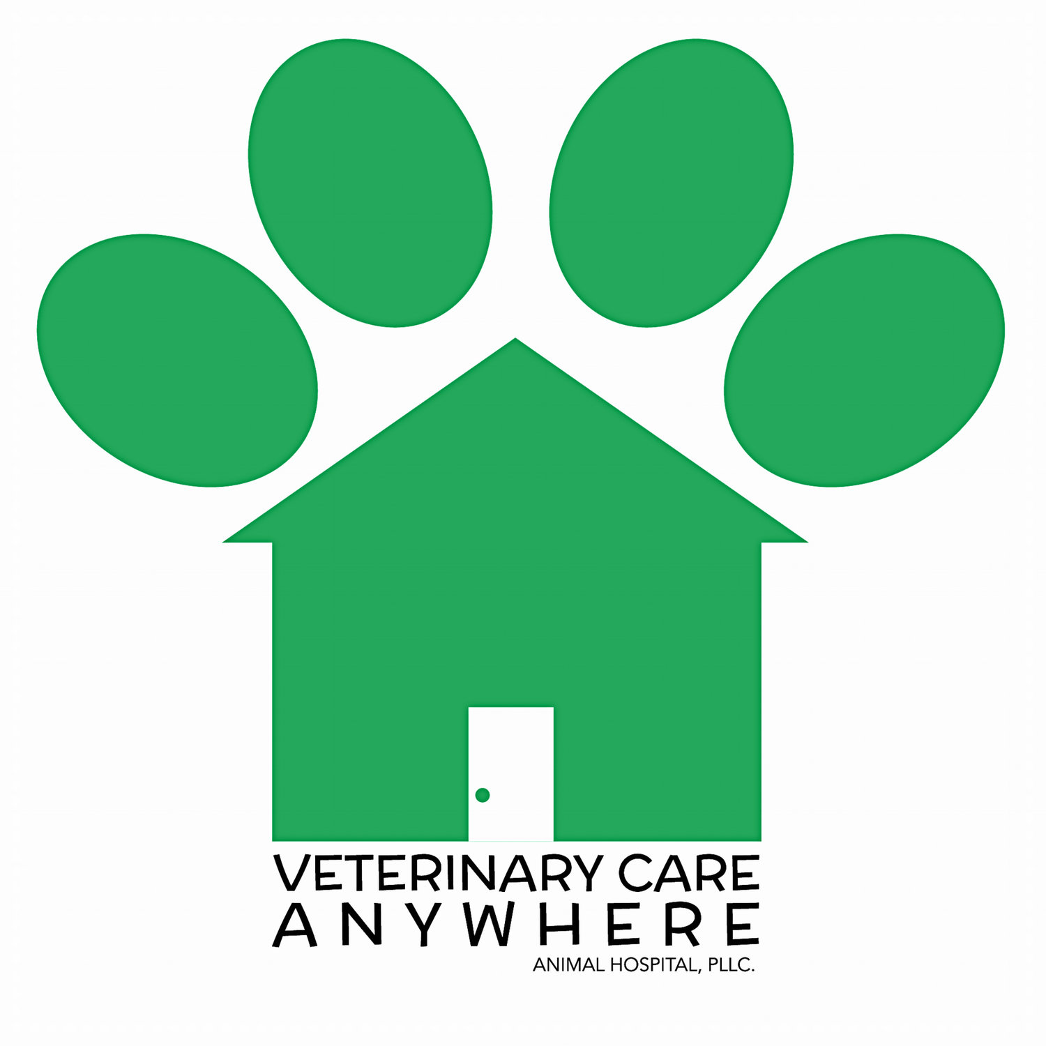 Veterinarian Animal Pet Services Clinic Hospital Raleigh
