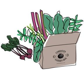 box-beets.jpg