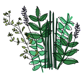 herb-bouquet.jpg