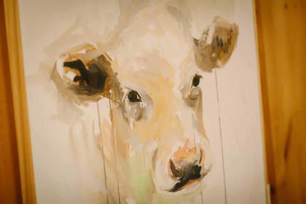 gallery-cow.jpg